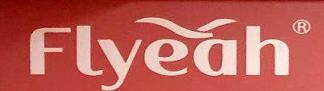 Guangzhou Flyeah Electronic Co.,Ltd